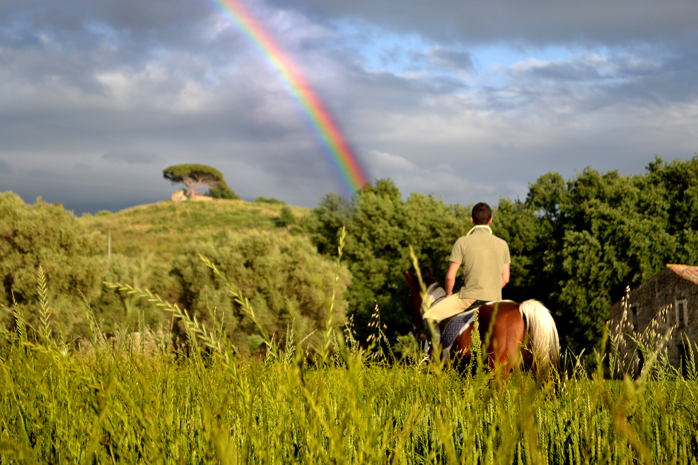 horse back riding, Gnu Acticity 2016