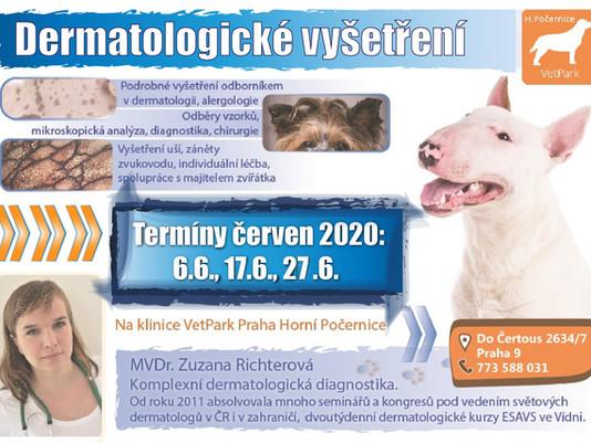 Mimořádná dermatologická vyšetření (červen)