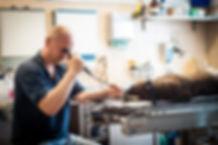 rigidní endoskop
