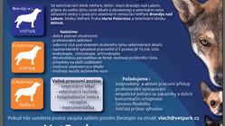 VetPark hledá nové kolegy!