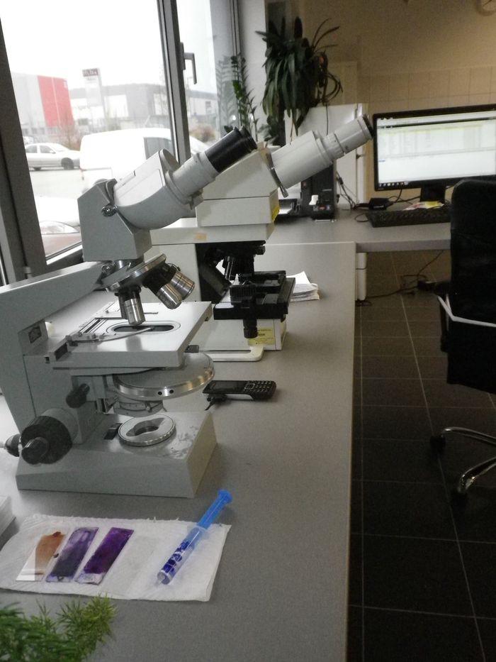 Laboratorní mikroskopy