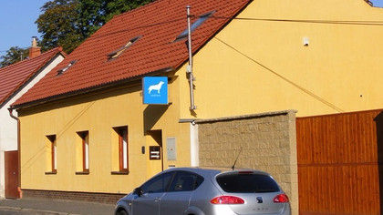 Otevíráme veterinární kliniku v Mělníku
