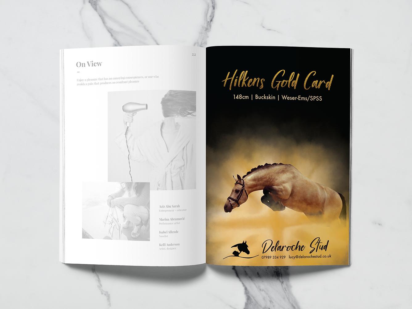A5 Magazine HORSE MockUp.png