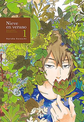 Nieve en verano, vol. 1 de Haruka Kawachi