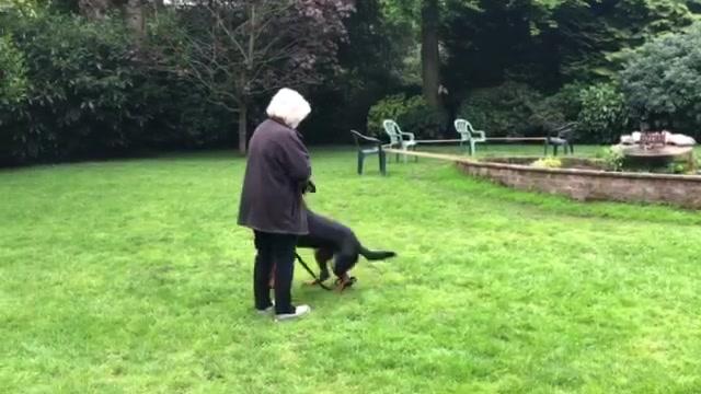 Rupert Training