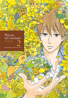 Nieve en verano, vol. 2 de Haruka Kawachi