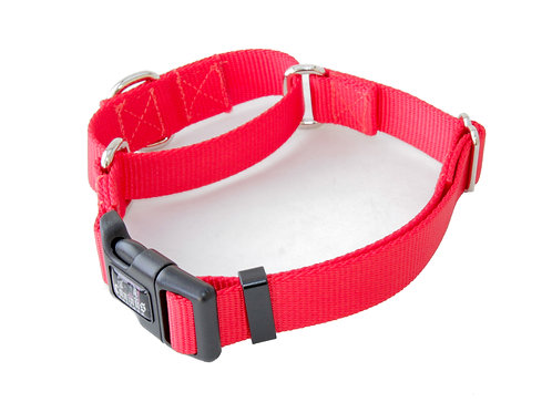 """1"""" and 3/4"""" Widths Nylon Martingale with Buckle Collars"""
