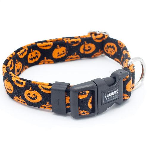 Jack O' Lantern Collar