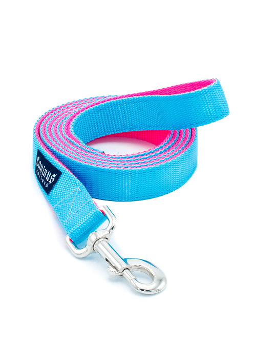 "1"" Nylon Leash Double Ply"