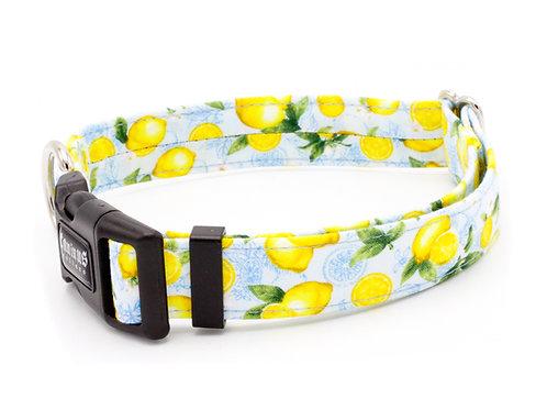 Lemons Collar
