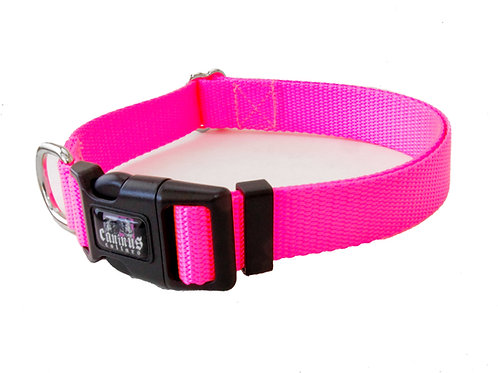 "1"" and 3/4""  Width Nylon Buckle Collars"
