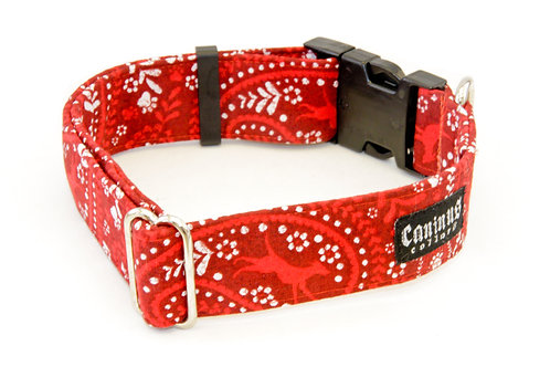 Dogs in Bandanas Collar