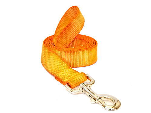 Sunburst Nylon Leash