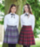 tartan skirt 1.jpg