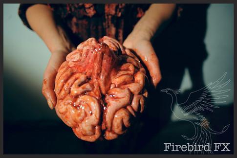 Brain_watermarked.jpg