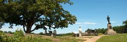 gettysburg-reading-tree