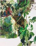 grüne2.jpg
