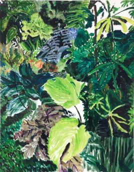 grüne3.jpg