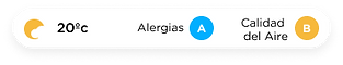 Allergies Spanish.png