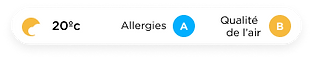 Allergies French.png