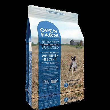 Open Fram Whitefish
