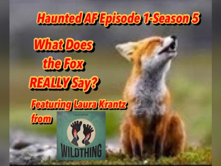 Haunted AF: AND WE'RE BACK! Episode 1 - Season 5