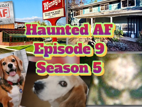 HAF Episode 9-Season 5: Don't Do Drugs (No One Will Believe Your Ghost Stories