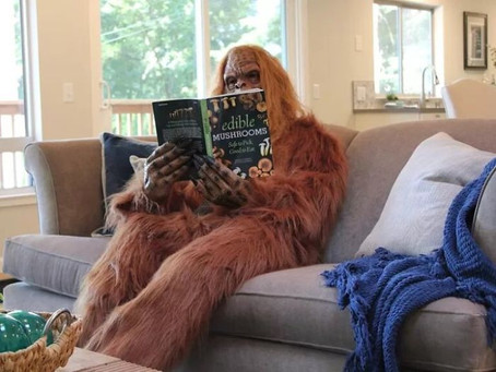 Someone Put Bigfoot in Their House Listing Photos