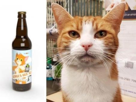 A Cat's T-Ale