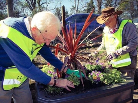 Enhancing Biodiversity at Railway Stations in Wales