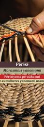 O fungo que as mulheres Yanomami usam na