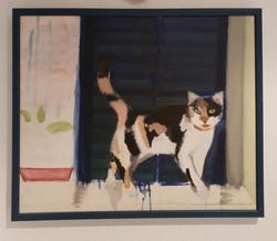 חתולה בשלושה צבעים