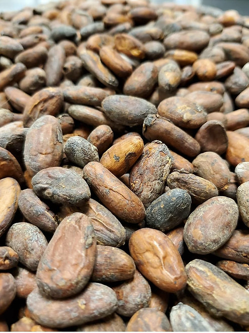 Whole Cacao Beans (Roasted)
