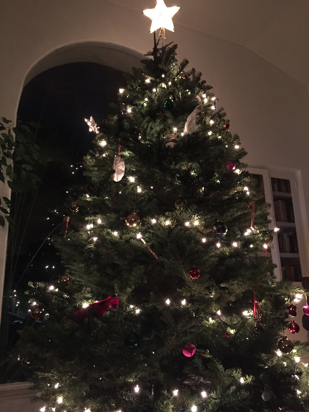 Amanda Garrigus Christmas Tree