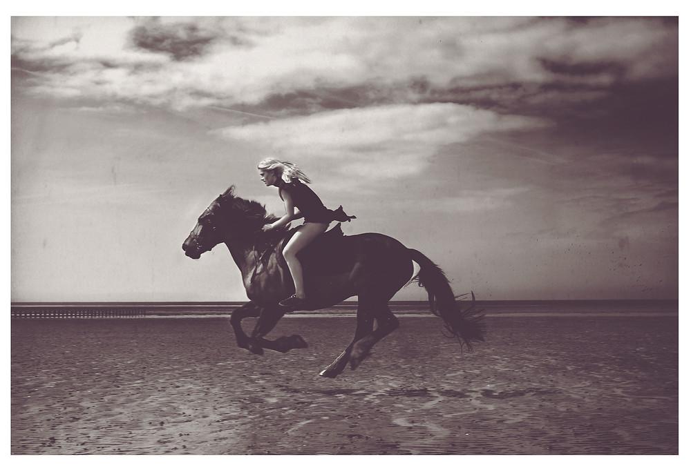Horse-Dave-Kai-Piper055.jpg