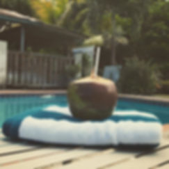 Rainforest Vacation Rental