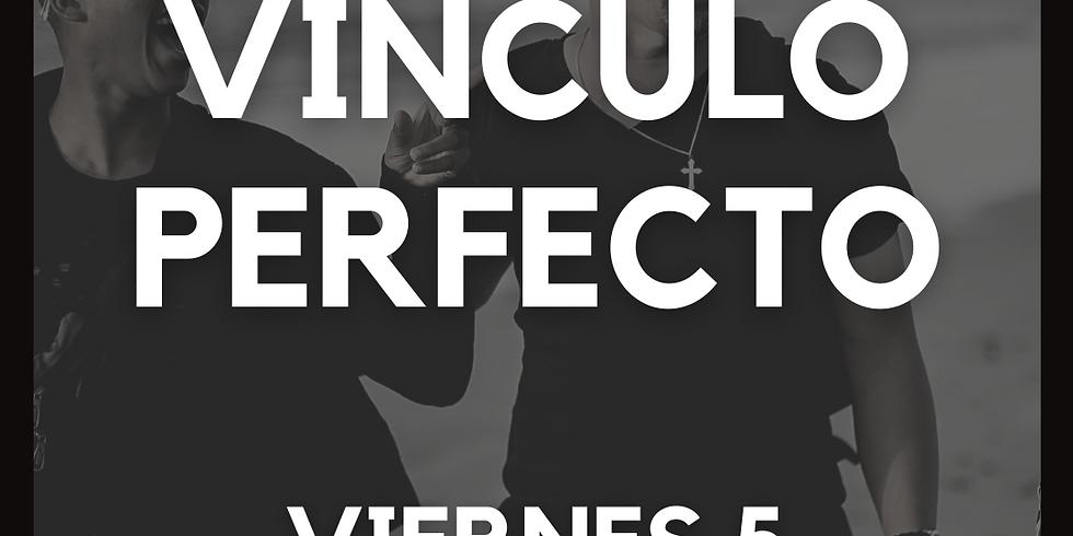 Vínculo Perfecto Jóvenes LIDs
