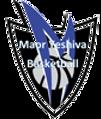 maor_logo.png