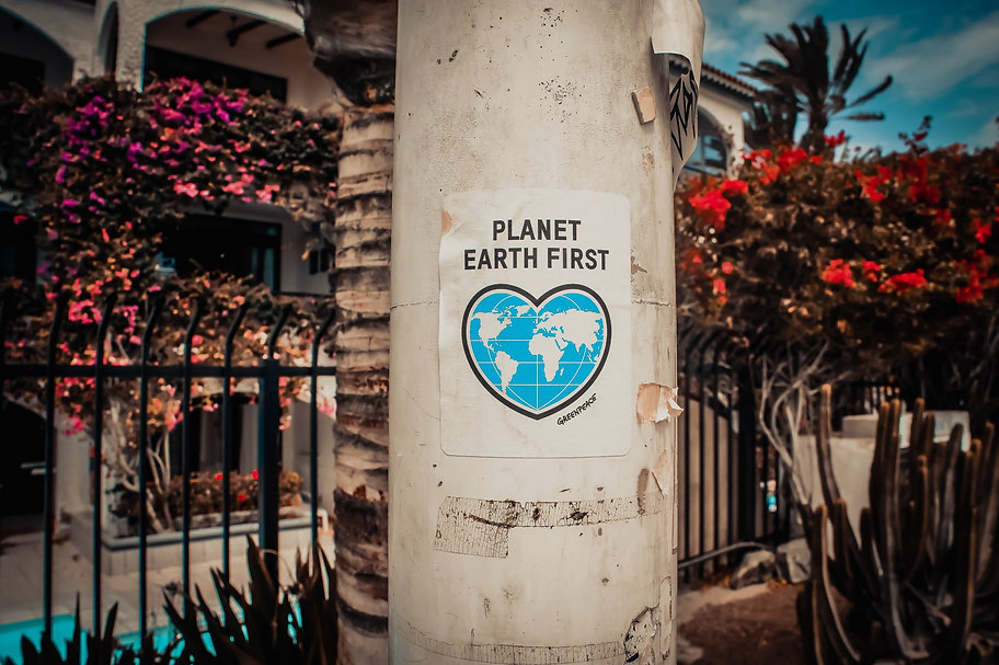 Planet%20Earth%20First%20signage%20stick