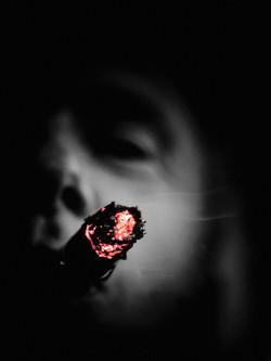 IMG_3453.cigarr.2.jpg