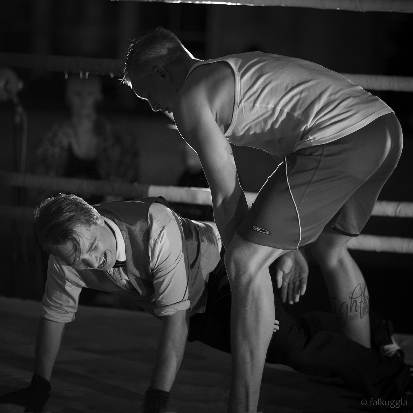 Sportfotograf Stockholm Falkuggla