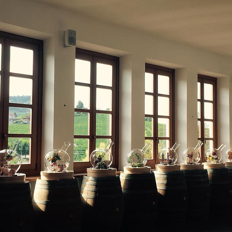 Barolo Wine Weekend