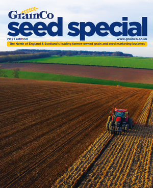 2021 Seed Special