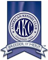 american kennel club breeder