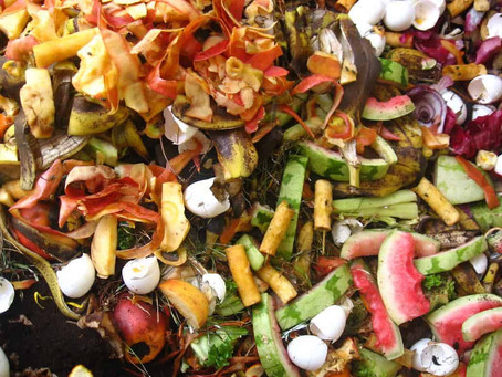 • ARTICLE • Parlons compost