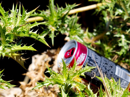 Campaign against litter dumped on roadsides launched