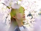 櫻花季來了!大阪幸福賞櫻之旅 | 2018大阪賞櫻熱點推介以及花期預測