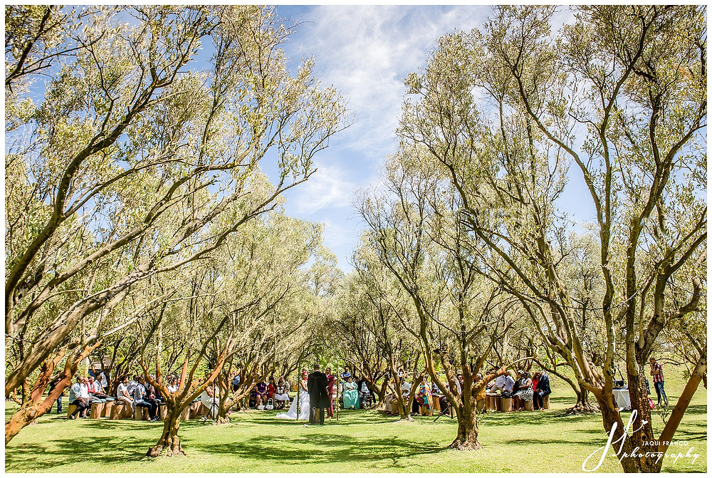 Wedding at Rusticana by Jaqui Franco Wedding Photography