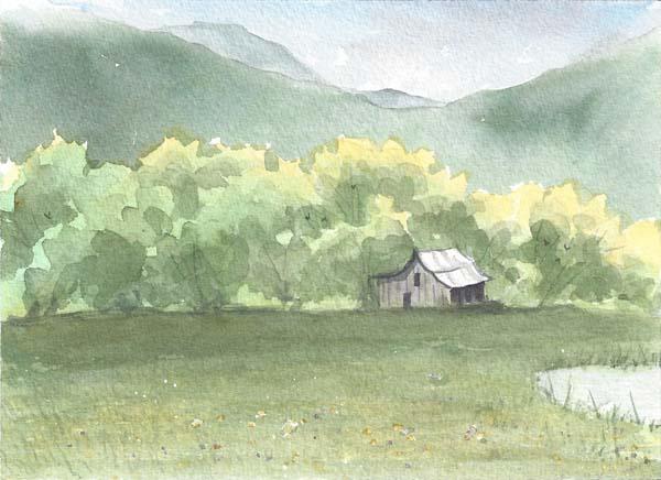 Glen Ayre Fields in Spring