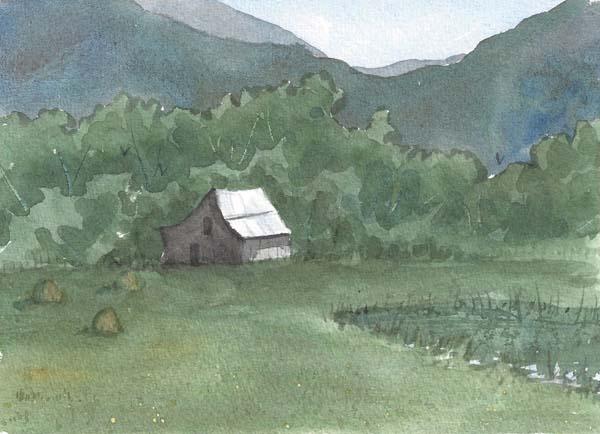Glen Ayre Fields in Summer